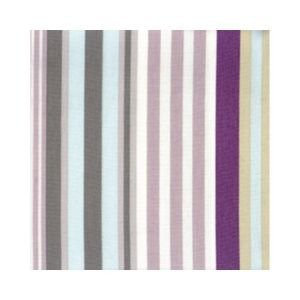 Multi Stripe Oil Cloth