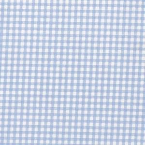 Blue Gingham Oil Cloth