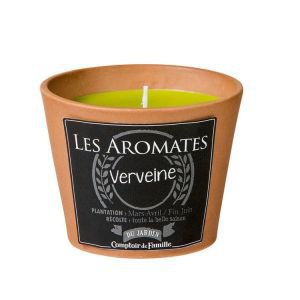Terracotta Plant Pot Candle - Verbena