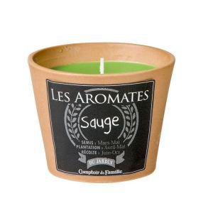 Terracotta Plant Pot Candle - Sage